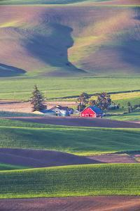 USA, Washington State, Red Barn in Spring by Terry Eggers