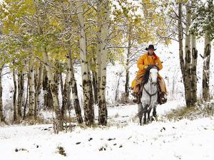 USA, Wyoming, Shell, Big Horn Mountains, Cowboys riding through with fresh snowfall by Terry Eggers