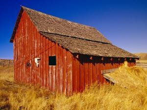 Weathered Old Barn on Ranch by Terry Eggers