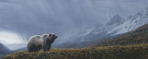 Stormwatch - Grizzly (detail) by Terry Isaac