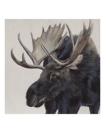 Wayward Moose