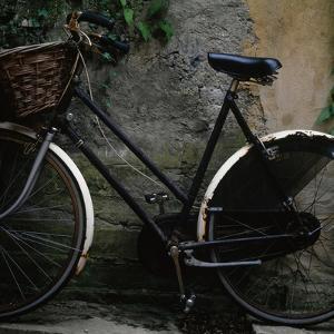 Vintage Bicycle by TERRY MCCORMICK