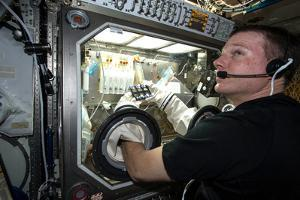 Terry Virts Works on an Experiment Using a Glove Box on the Iss by Terry Virts