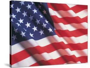 American Flag, Stars and Stripes by Terry Why