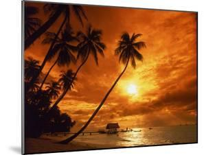 Sunset at Pigeon Point, Tobago, Caribbean by Terry Why