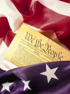 US Flag, Constitution by Terry Why