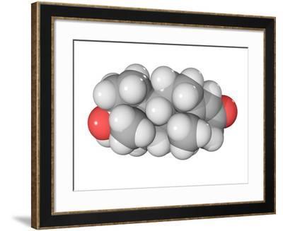Testosterone Hormone, Molecular Model-Laguna Design-Framed Photographic Print