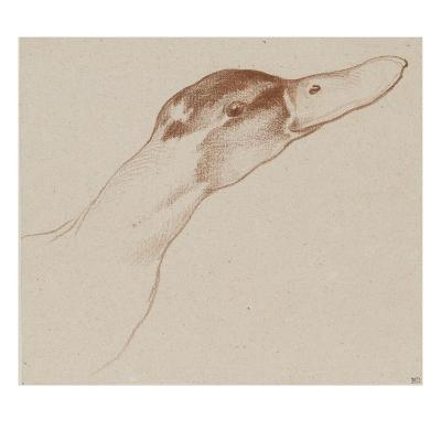 Tête de canard-Edme Bouchardon-Giclee Print