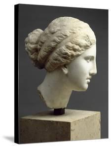 """Tête féminine : tête de l'Aphrodite de Cnide, dite """" Tête Kaufmann """""""