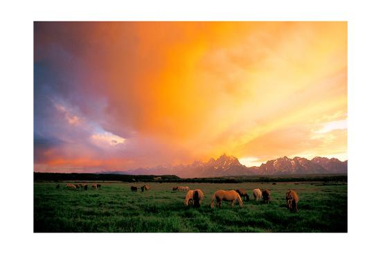Teton Pony Herd-Gary Crandall-Art Print