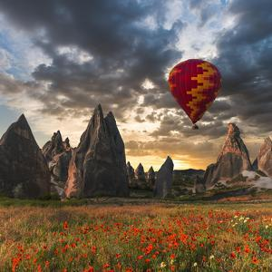 Hot Air Balloon Flying over Red Poppies Field Cappadocia Region, Turkey by Tetyana Kochneva