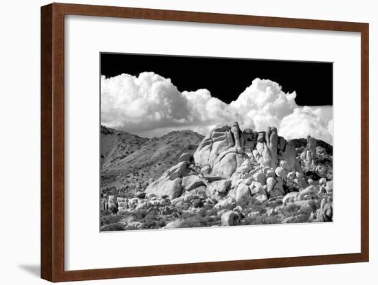 Texas Canyon Rocks BW-Douglas Taylor-Framed Photo