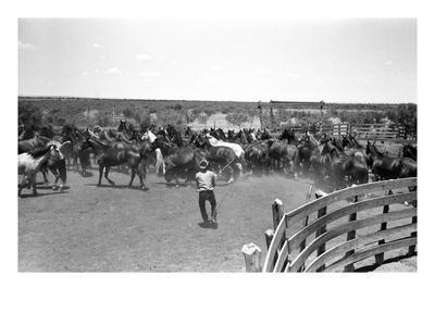https://imgc.artprintimages.com/img/print/texas-cowboy-1939_u-l-pgnvm50.jpg?p=0