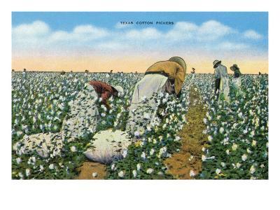 Texas - View of People Picking Texan Cotton, c.1940-Lantern Press-Art Print