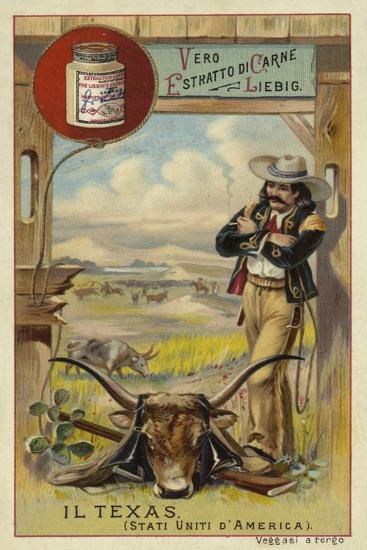Texas--Giclee Print