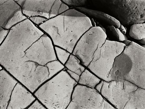 Texture 2-Lee Peterson-Photographic Print