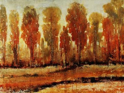 Texture of Trees-Tim O'toole-Giclee Print