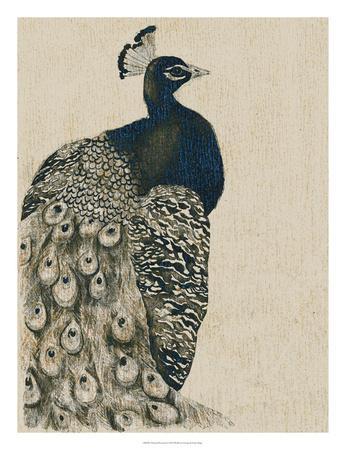 https://imgc.artprintimages.com/img/print/textured-peacock-i_u-l-f8hs3u0.jpg?p=0