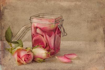 Textured Still Life of Rose Water and Roses on a Painterly Background- Anyka-Photographic Print