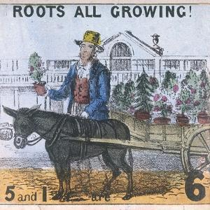 Roots All Growing!, Cries of London, C1840 by TH Jones