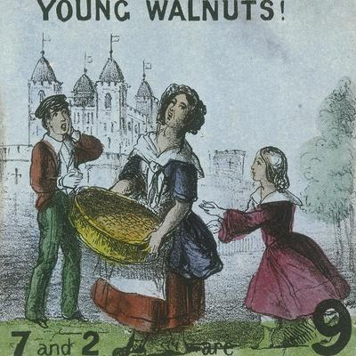 Young Walnuts!, Cries of London, C1840