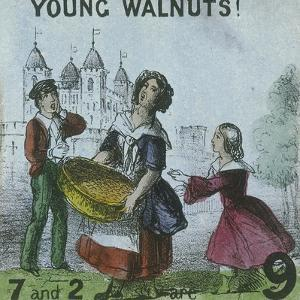 Young Walnuts!, Cries of London, C1840 by TH Jones