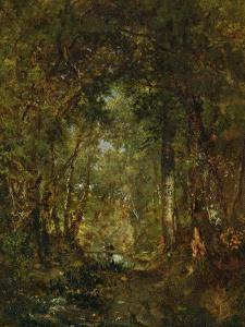 In the Wood at Fontainebleau by Th?odore Rousseau