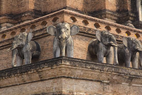 Thailand, Chiang Mai, Wat Chedi Luang. Elephant Statues-Emily Wilson-Photographic Print