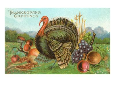 Thanksgiving Greetings, Turkey with Fruits--Art Print