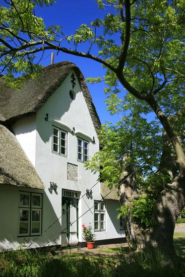 Thatched Captain's House under an Old Ash on the Corner 'Kastanienweg' (Street-Uwe Steffens-Photographic Print