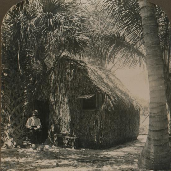 'Thatched Cottage in Cocoanut Grove, Florida, U.S.A.', c1900-Unknown-Photographic Print
