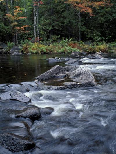 The 100 Mile Wilderness section of the Appalachian Trail, Maine, USA-Jerry & Marcy Monkman-Photographic Print