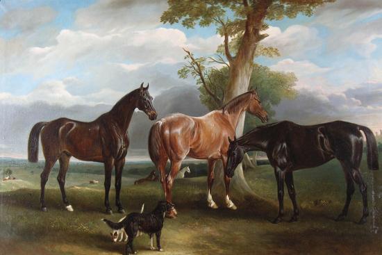 The 6th Duke's Favourite Hunters and Dogs, 1857-John E^ Ferneley-Giclee Print