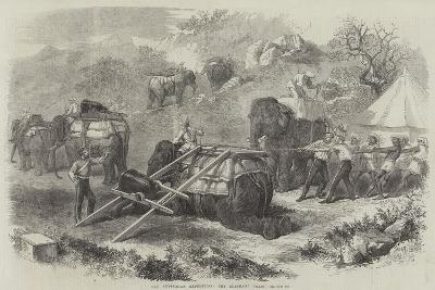 The Abyssinian Expedition, the Elephant Train--Giclee Print