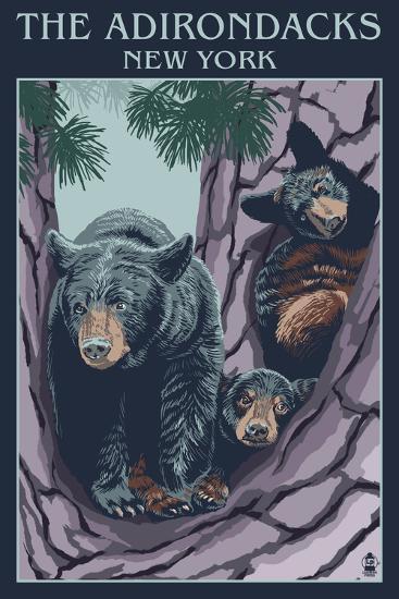 The Adirondacks, New York State - Bear Family in Tree-Lantern Press-Art Print