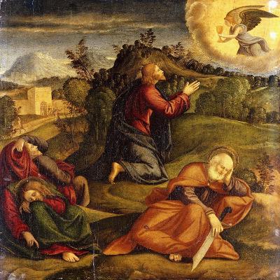 The Agony in the Garden-Girolamo da Santacroce-Giclee Print