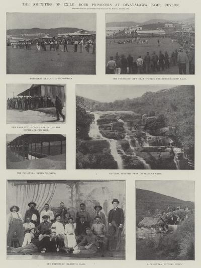 The Amenities of Exile, Boer Prisoners at Diyatalawa Camp, Ceylon--Giclee Print