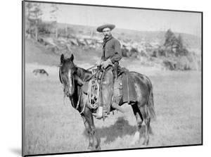 The American Cowboy