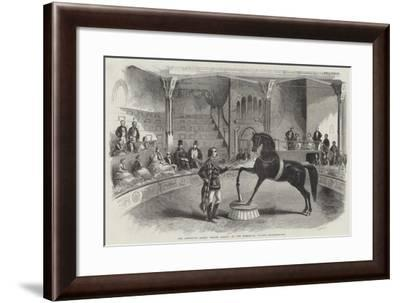 The American Horse Black Eagle, at the Alhambra Palace--Framed Giclee Print
