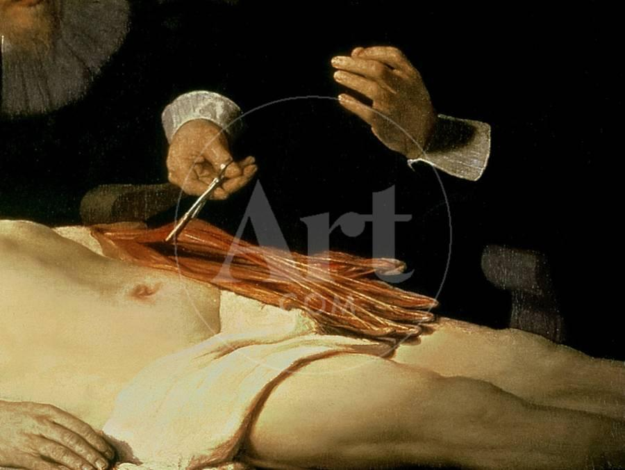 The Anatomy Lesson of Dr. Nicolaes Tulp, 1632 Giclee Print by ...