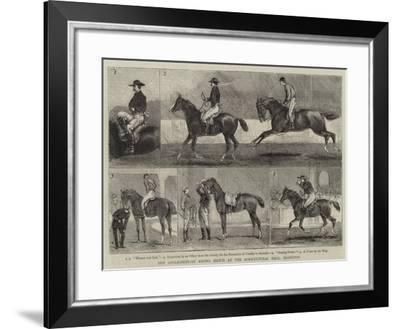 The Anglo-Mexican Riding Match at the Agricultural Hall, Islington-Alfred Chantrey Corbould-Framed Giclee Print