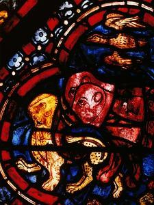 The Animals Leaving Noah's Ark, Stained Glass