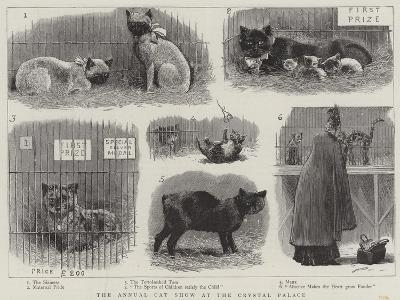The Annual Cat Show at the Crystal Palace--Giclee Print