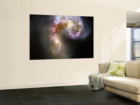The Antennae Galaxies--Wall Mural