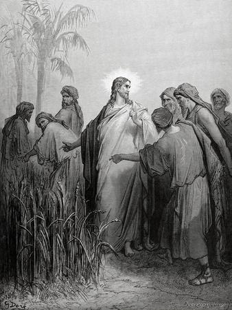 https://imgc.artprintimages.com/img/print/the-apostles-gathered-ears-in-the-day-of-rest_u-l-poti7x0.jpg?p=0