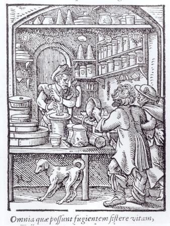 https://imgc.artprintimages.com/img/print/the-apothecary-published-by-hartman-schopper_u-l-p55han0.jpg?p=0