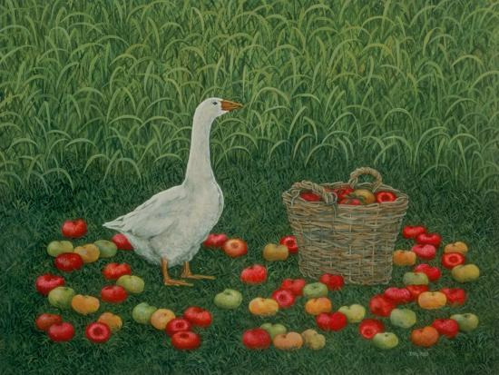 The Apple Basket-Ditz-Giclee Print