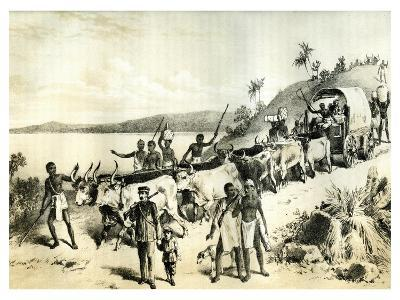 The Arrival at Lake Ngami, 1883--Giclee Print