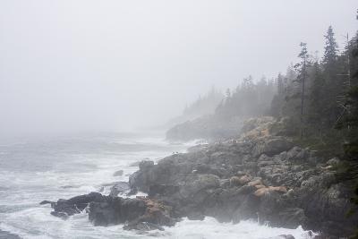 The Atlantic Ocean Crashing on a Foggy, Rocky, Tree-Lined Shore-Jonathan Irish-Photographic Print