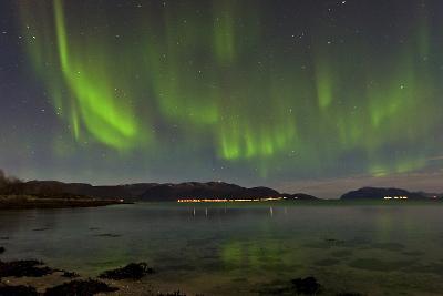 The Aurora Borealis Appears Above a Fjord-Babak Tafreshi-Photographic Print